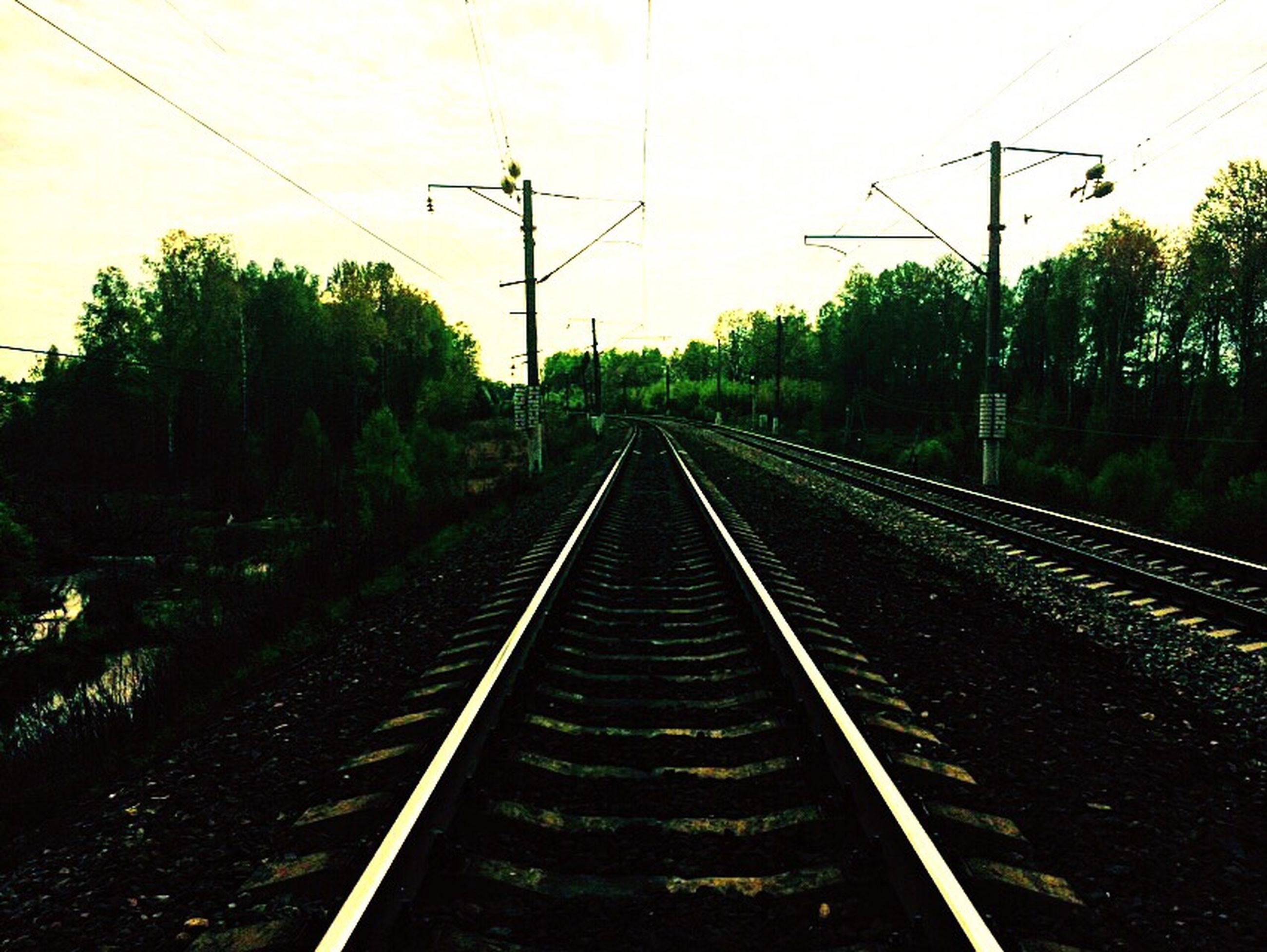 railroad track, the way forward, rail transportation, transportation, diminishing perspective, vanishing point, power line, tree, electricity pylon, railway track, sky, electricity, clear sky, long, straight, outdoors, no people, public transportation, nature, growth