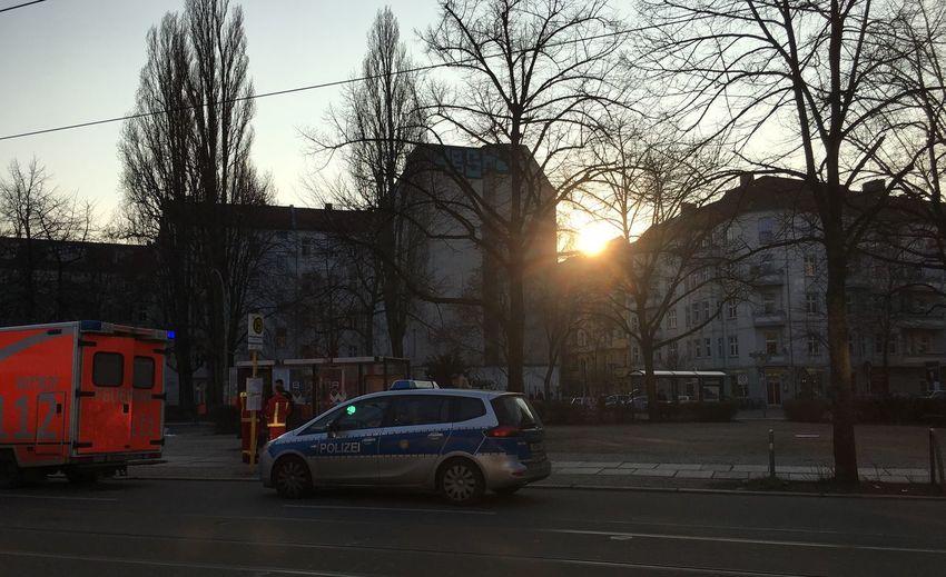 Cars on street at sunset