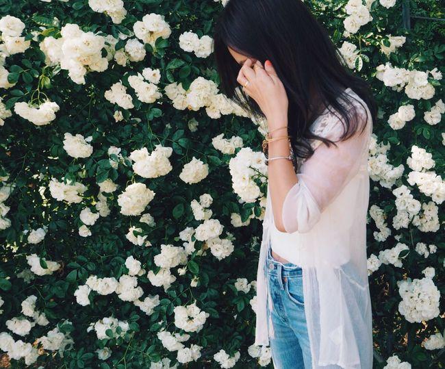ROSE WALL🌹 Women Flower Beauty Nature Nature Roses Rose - Flower Rosewall Rosegarden White White Flower