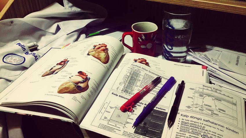 Medicine Studying
