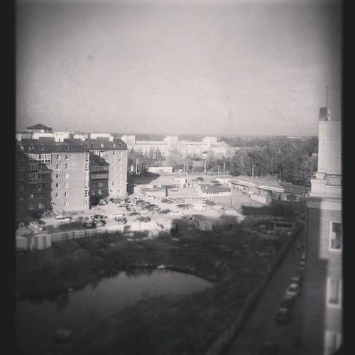 Помню знакомую хату, помню вид из окна, Надеюсь, что меня помнят эти дома... изокна вечер Пушкин лирик