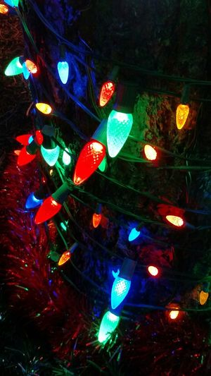 Bright Lights Tis The Season Christmas Night Pictures Lights On Tree Colourful Beautiful