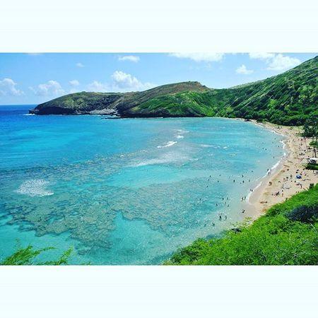 キレイ !!!!!!ハナウマ湾 シュノーケリング 自然保護区→ ココヘッドトレイル ハワイ Hanaumabay Hanaumabaynaturepreserve Hawaii Beach Beautiful