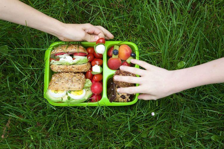 Childhood Food Freshness Friendship Green Color Healthy Eating Lunchbox Variation Vegetable