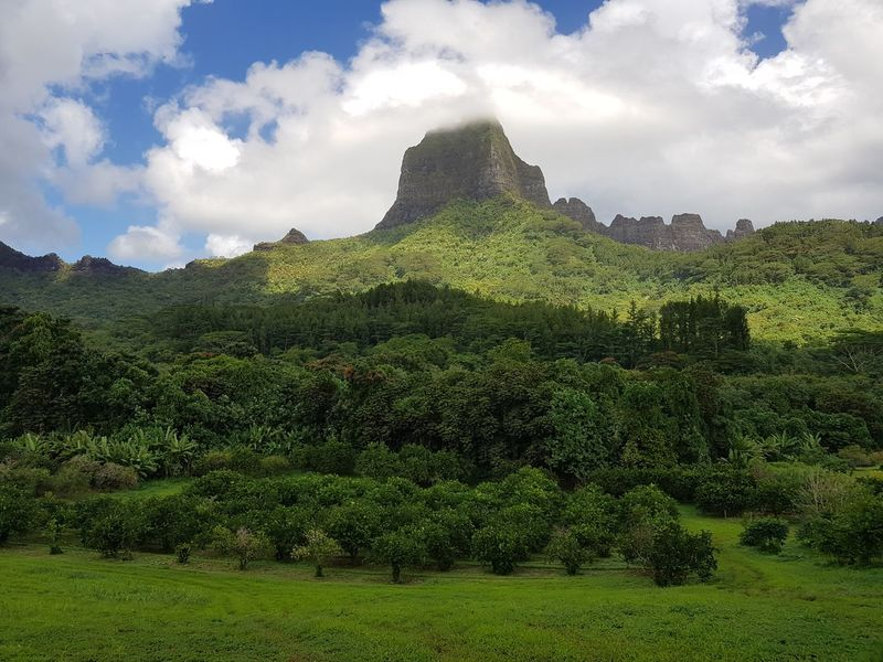Cloud - Sky Green Color Mountain Sky Landscape Beauty In Nature Nature Moorea French Polynesia Vacations Tahiti Travel Destinations Beauty In Nature