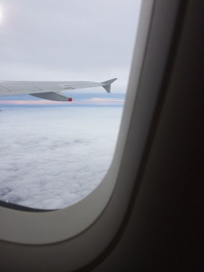 Airplane Flying Transportation Journey Travel Mode Of Transport Aircraft Wing Airplane Wing Air Vehicle Aeroplane Aerial View Sky Aircraft Mid-air Nature Vehicle Interior Horizon Over Water Day Sea No People