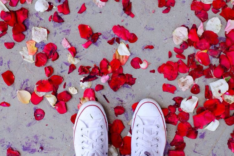 Low view of person standing on red rose petals
