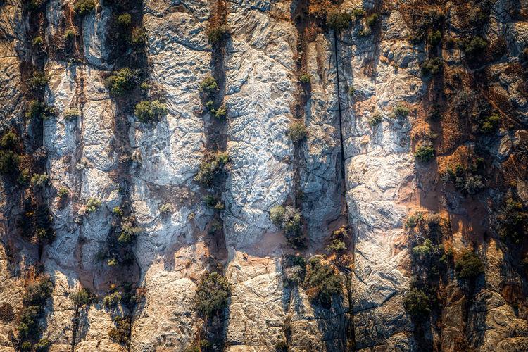Full frame shot of rock formation in forest