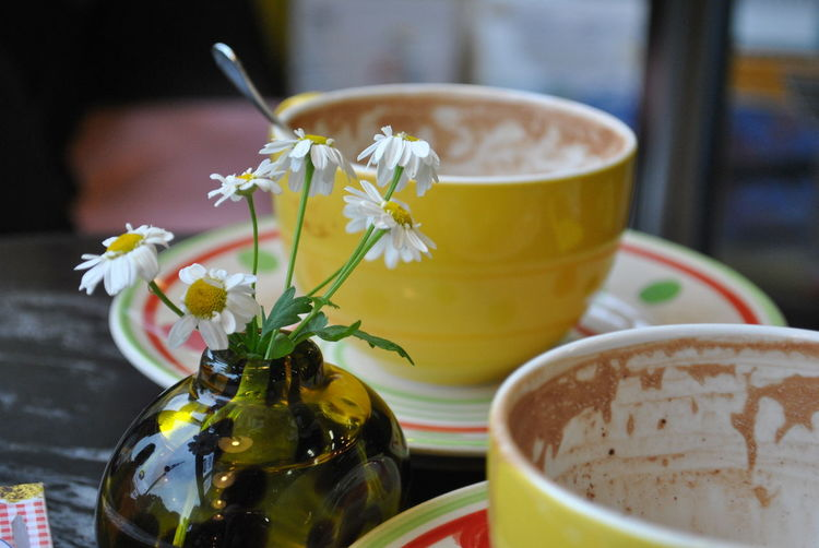 Close-up of flowers with empty coffee cups