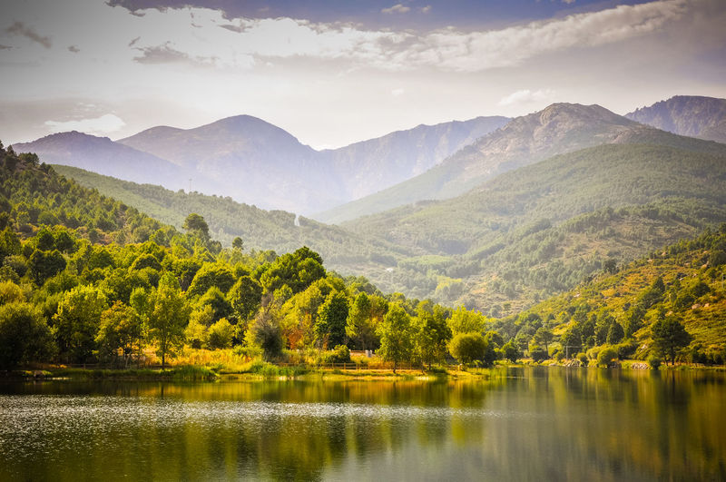 A panoramic view during the summer of a forest in one of the lakes of the Sierra de Gredos, in Spain. Mountain Beauty In Nature Scenics - Nature Water Tranquil Scene Sky Tree Tranquility Mountain Range Plant Lake Nature Non-urban Scene No People Cloud - Sky Landscape Idyllic Environment Day Outdoors SPAIN Spain🇪🇸 Valle Del Tietar Valley Landscape_photography Lake View Lakeview Summer Summertime 🌞 Avila Gredos Panoramic Photography Panoramic Panoramic View Forest Forest Photography Forestwalk Bosque Montana Lago Reflejo Relfection Clouds Clouds And Sky Castillayleon Green Color Yellow Yellow Flower Cielo Y Nubes  Cielo