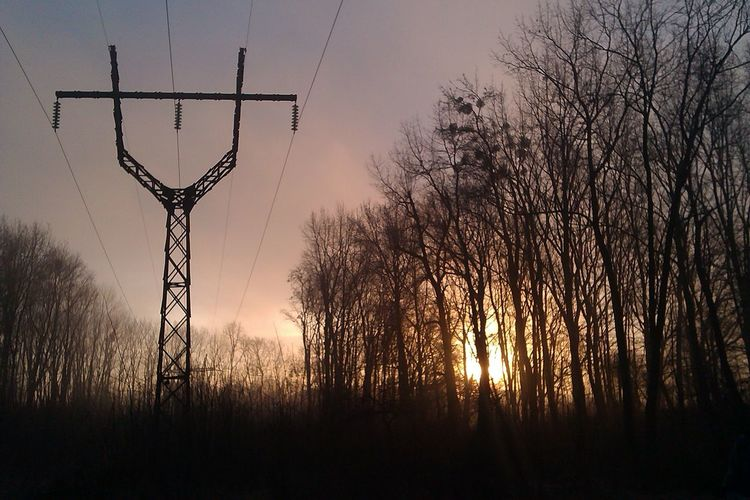 Silhouette Electricity Pylon By Trees Against Orange Sky