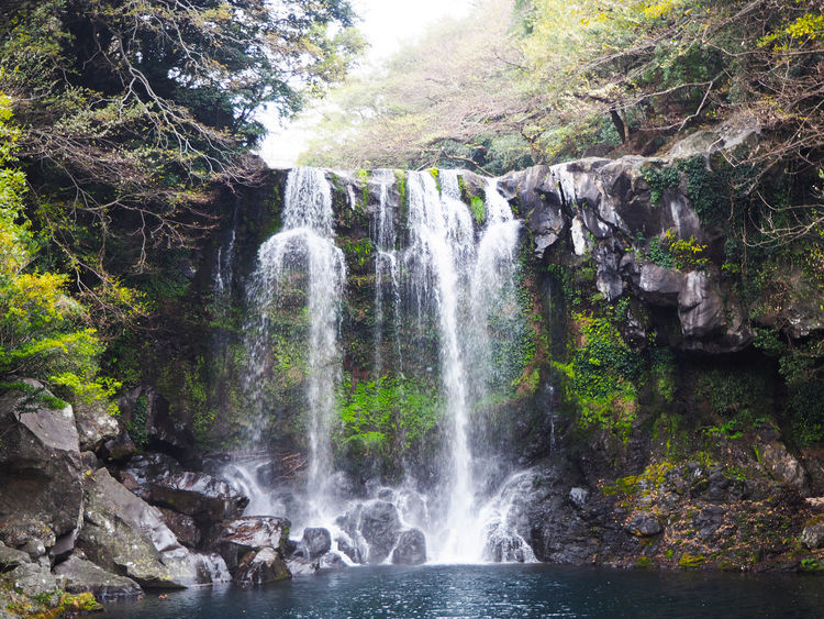 Cheonjeyeon Falls, 2016. ASIA Beauty In Nature Cheonjeyeon Cheonjeyeon Falls Day Flowing Water Jeju JEJU ISLAND  Korea Long Exposure Motion Nature No People Outdoors Power In Nature Rock - Object Scenics South Korea Splashing Travel Travel Destinations Tree Water Waterfall