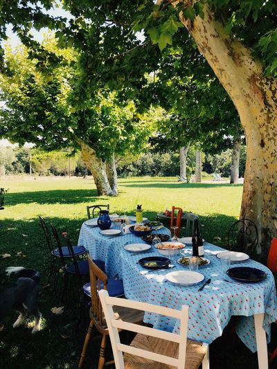 France Lunch Provence Relaxing Rhône Travel Countryside Food And Drink Front Or Back Yard Place Setting Plant South Of France Summer Table Travel Destinations Vacation