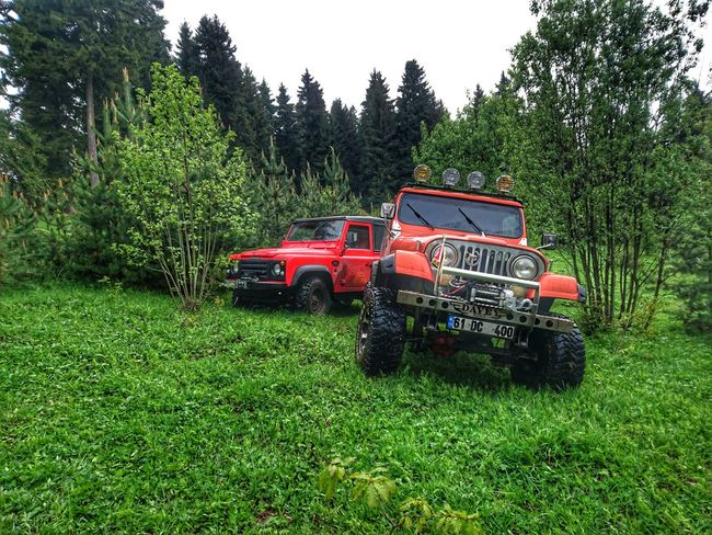Agriculture Green Color Field Growth Tree No People Day Outdoors Rural Scene Grass Nature Tree Live For The Story Land Vehicle Car Defender90 Jeep Life ❤ Travel Spring Springtime Adventure Offroad Photo Shooting