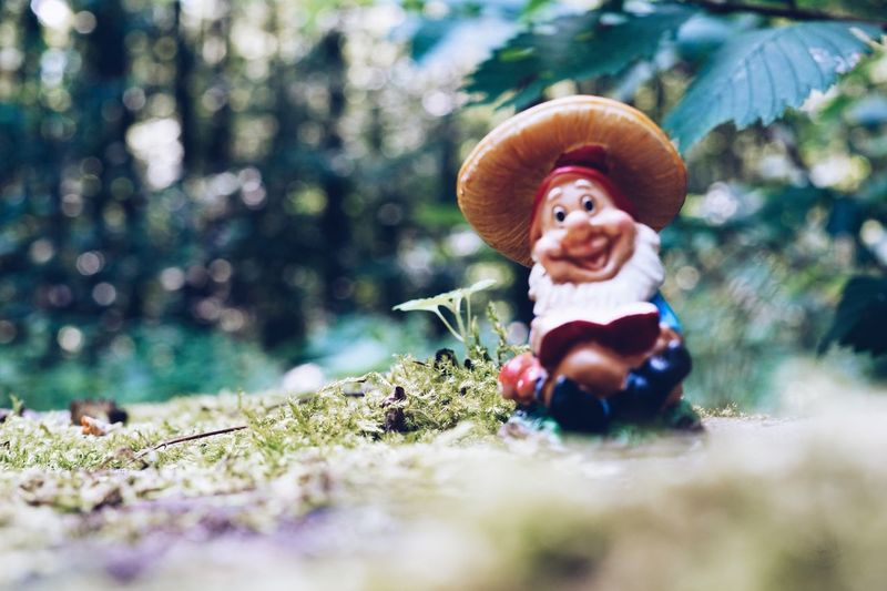 Mushroom Nature Outdoors Toadstool Zwerg Forest Fungus Woods Garden Gnome Gartenzwerg Lawn Gnome Nature Figurine
