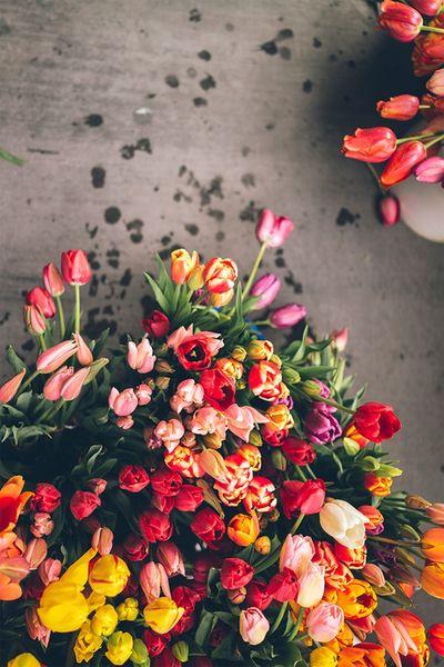 Color Explosion Colors Flowers Bokeh Love ^:^