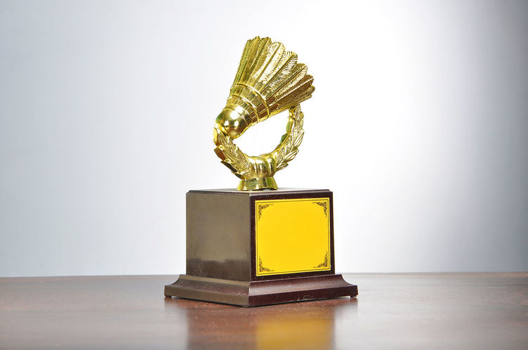 Trophy for champion Achievement AWARD Celebration Ceremony Champion Championship Close-up Competition Contest Contests Cup Effort First Gold Golden Honor Leadership Leadership Prize Sport Success Trophy Victory Win Winner