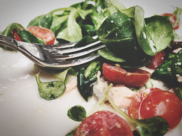 Freshness Food Food And Drink Tomato Healthy Eating Indoors  Vegetable Leaf Plate No People Close-up Ready-to-eat Day Salad Salmone Salmon Salad Italian Food