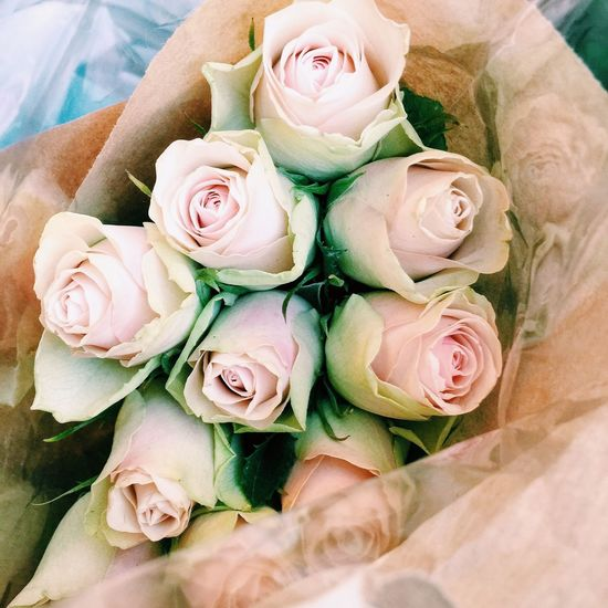 Rosebuds Rosebud Roses Freshness Flower Collection Excotic Romantic Flowers Lovely Beautiful Nature Bouquet Bouquet Of Flowers Bouquet Roses Light Pink