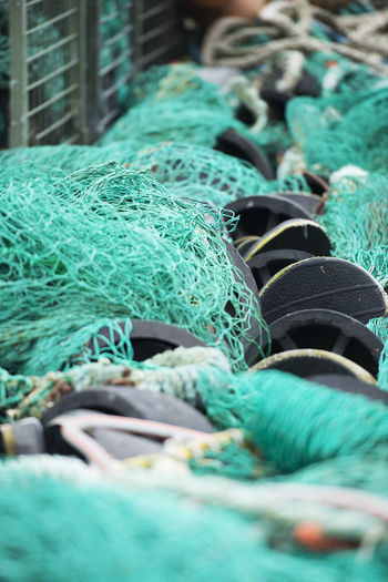 Rope with green