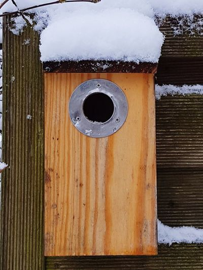 Snow ❄ Winter Snow Covered Garden Wintertime Birdhouse Snowy Garden Water Door Hole