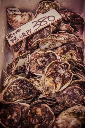 Japan Japanese Culture Close-up Day Fish Market Food Food And Drink Freshness Healthy Eating High Angle View Indoors  Market No People Oysters Price Tag Retail  Seafood
