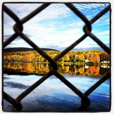 Through The Fence. #miltonvt #vt Foliage 802 Iphoneonly Miltonvt Photooftheday Igharjit Picoftheday Vt_scene Vermont Vermont_scene Igvermont Igvt All_shots Instamood Vermont_foliage Bestoftheday Fallinvt Instagood Vt_foliage Webstagram Lakearrowhead Whpshiftingseasons Vt Reflection Vt_scenery Vermont_scenery