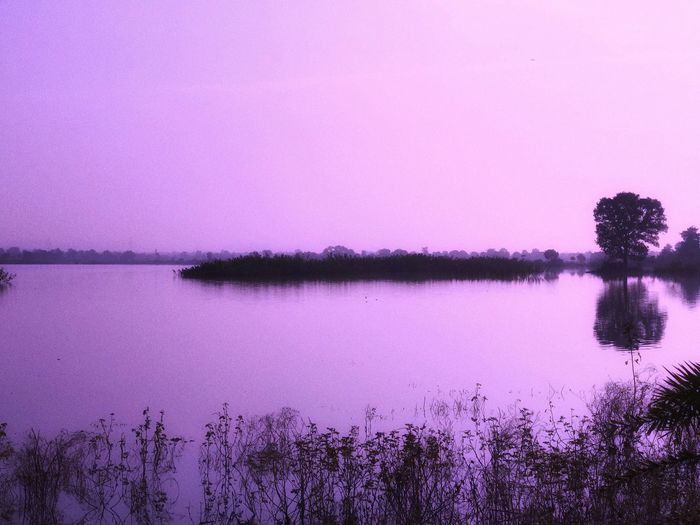 Water Lake Nature Beauty In Nature Reflection Tranquility Tranquil Scene Tree Outdoors No People Purple Scenics Plant Growth Day Sky Smooth Clear Sky Rowboat Abandoned Lonly Peaceful Narkher India IPhone7Plus