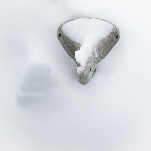 A bicycle saddle sticks up through a snow drift Bicycle Cold Temperature Frozen High Angle View Nature Saddle Sadle Season  Single Object Snow Weather White White Background White Color Winter