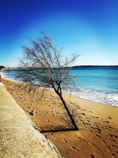First Eyeem Photo Desert Sealine Beach Trees And Nature Mediterranean  Seascape Coastline Ocean Calm Sandy Beach Coast Wave