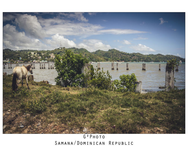 G2Photo Samana Dominican REpublick Newuseroneyeem Bestpicture Bestoftheday T3i Canon Lanscape Lanscape Photography Bestpic Bestphoto Follow #f4f #followme #TagsForLikes #TFLers #followforfollow #follow4follow #teamfollowback #followher #followbackteam #followh Followme