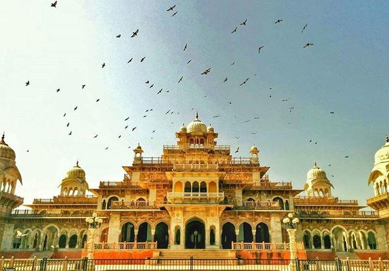 Jbclickz Alberthall TravelPlaces Traveldiaries Jaipur Photobombing