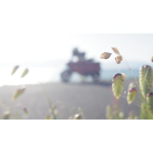Lake_Biwa Honda Motocompo モトコンポ