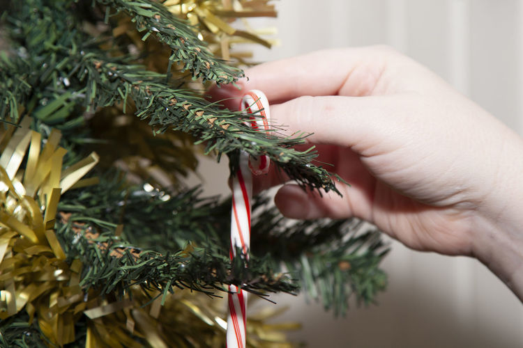 Close-up of hand decorating christmas tree