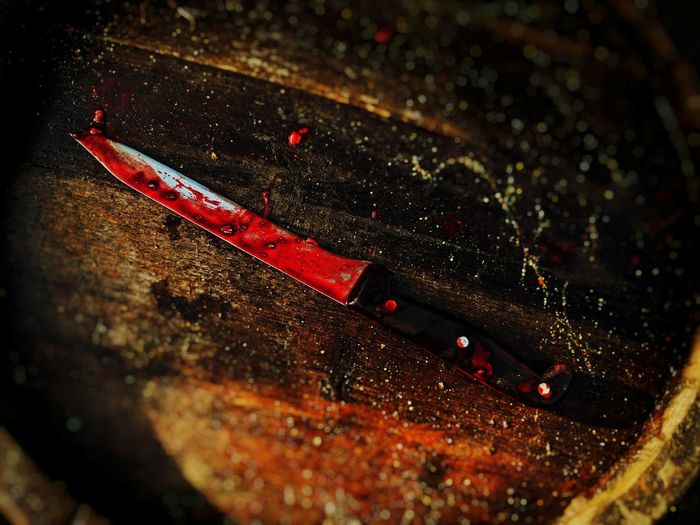 Close-up High Angle View No People Outdoors Day Animal Themes knife Blood