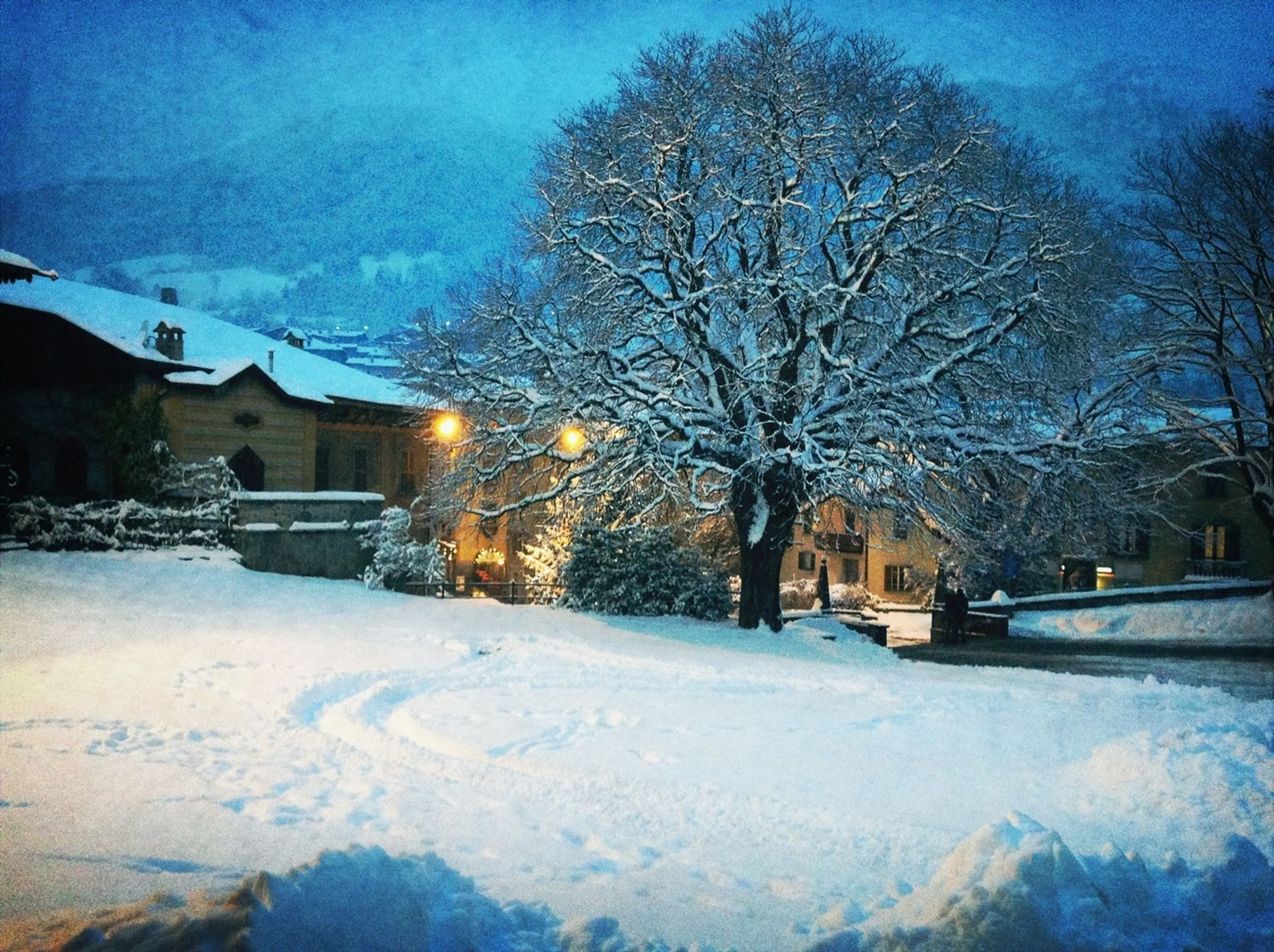 snow, winter, cold temperature, season, building exterior, bare tree, architecture, built structure, weather, house, tree, covering, sky, frozen, residential structure, residential building, illuminated, nature, street, dusk