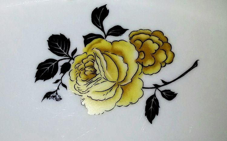 Porcelain yellow roses Porcelain  Fine Art Photography Fine Art Vintage Roses Yellow Flower 🌸 Roses Yellow Roses