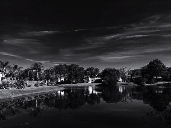 Black And White Showcase: January Summerfield Shades Of Grey