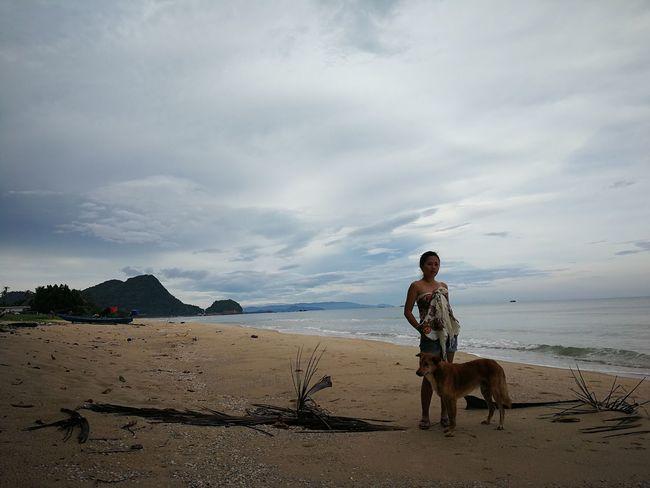 Khanom Surat Thani Beach Yellow Dog  Best Friend Sky Sand Tree