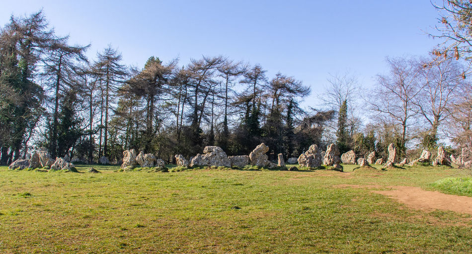 No People Nature Day History Landscape Field Outdoors Neolithic Stones Stone Circle