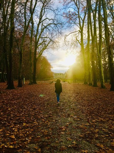 Rear view of woman walking on leaves during autumn