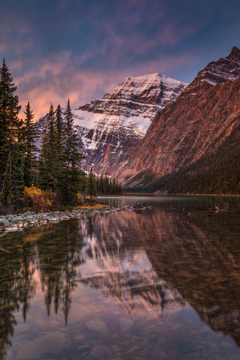 Edith cavell mountain at dawn in the canadian rockies.