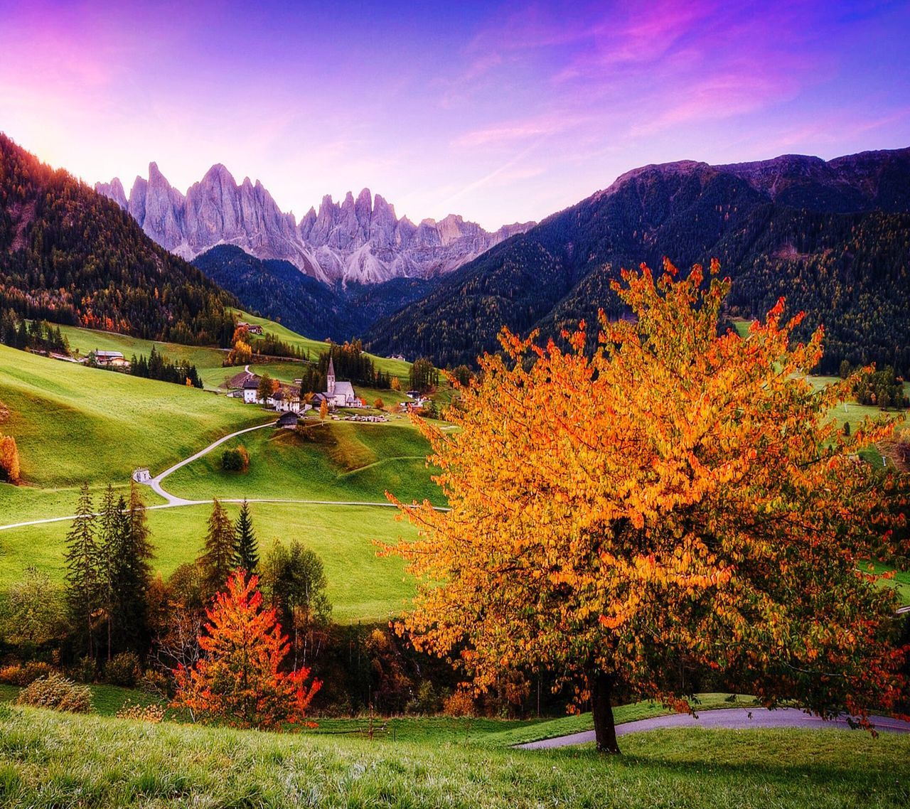 beauty in nature, plant, autumn, mountain, tree, sky, scenics - nature, tranquil scene, environment, tranquility, grass, nature, landscape, change, land, idyllic, field, non-urban scene, green color, orange color, outdoors, no people