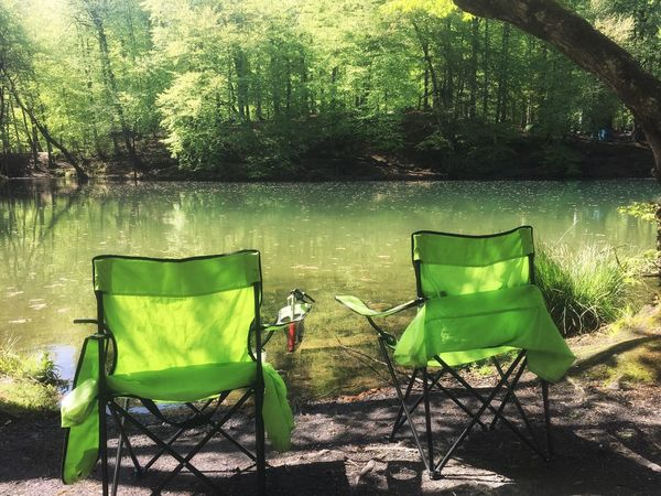 Chair Lake Tree Folding Chair Outdoors Water Day Nature Green Color Tranquility Lakeshore Tranquil Scene Grass Beauty In Nature Growth No People Sitting Scenics Green Color Green