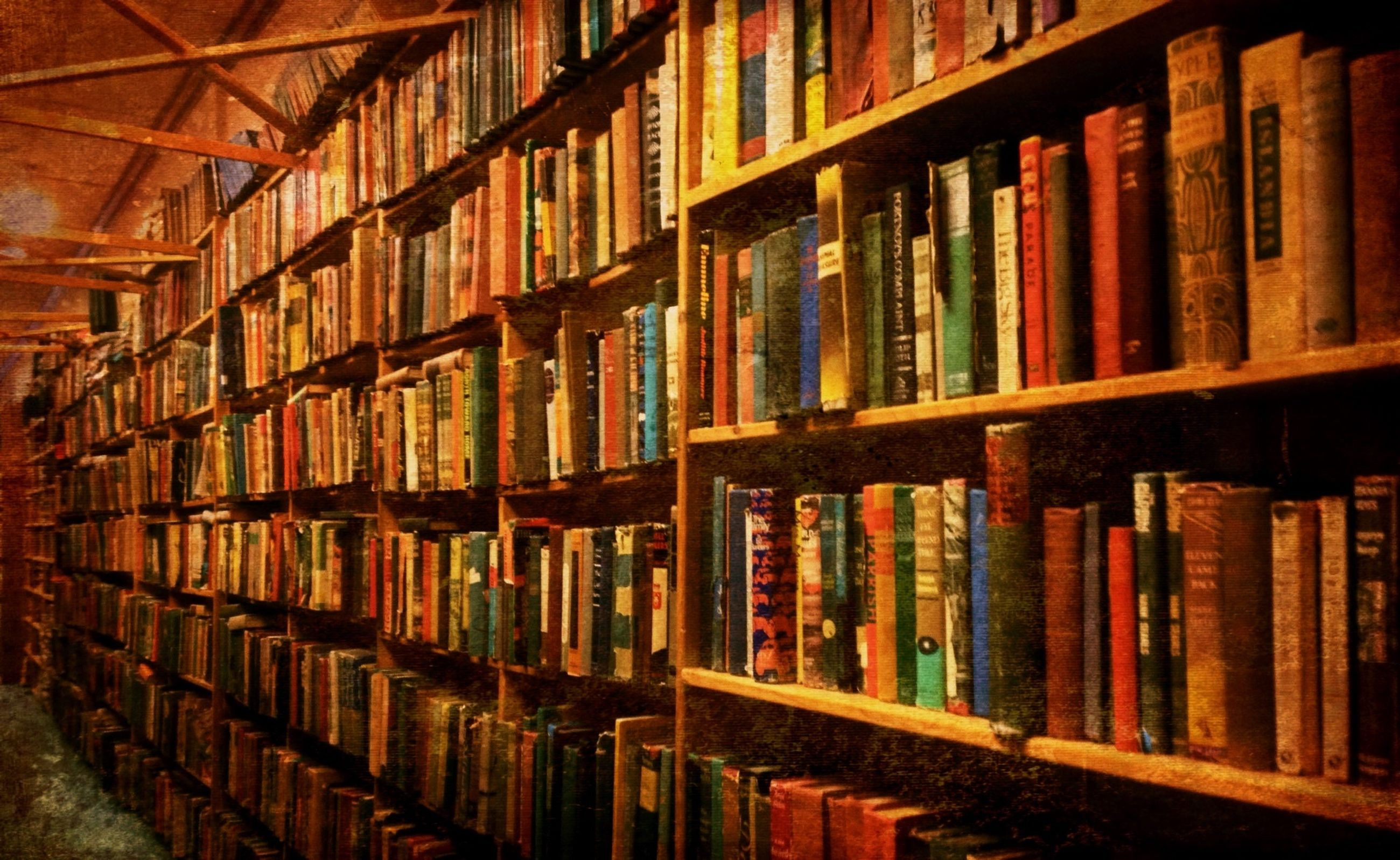 indoors, in a row, order, large group of objects, shelf, arrangement, variation, abundance, bookshelf, choice, multi colored, full frame, education, repetition, collection, book, library, backgrounds, window, stack