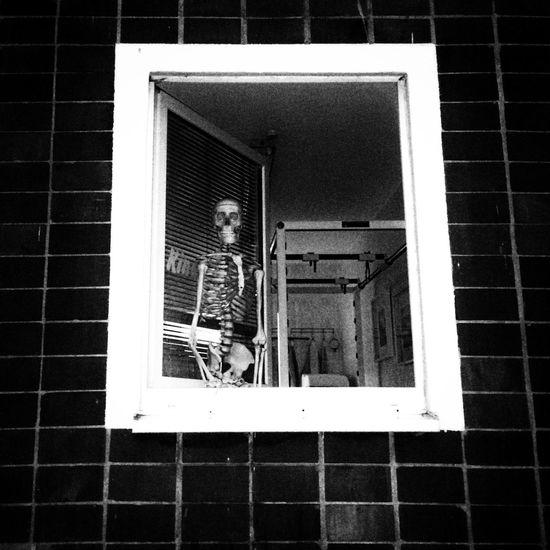 Good morning Window Close-up Black And White Blackandwhite Lichtenhagen Rostock Low Angle View Skulls And Bones Sceleton Black And White Friday