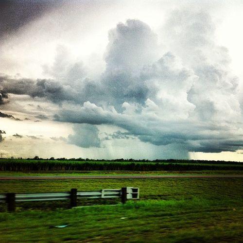 Weather Rain Thunderstorm Shower Louisiana Royalsnappingartists Rsa_trees Trailblazers_rurex Trailblazers_rural Rsa_sky Jj_louisiana Rainshower Meteorology Jj_louisiana_038 Thundershower Rainfoot