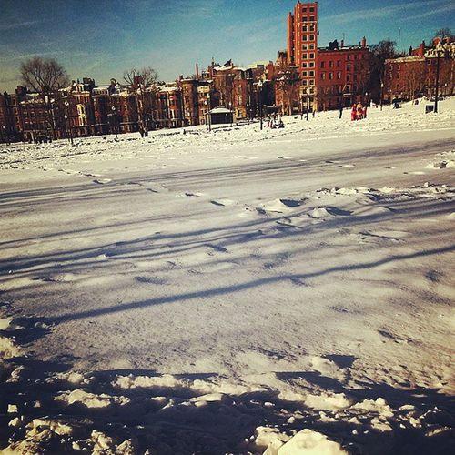 Boston Beaconhill  Bostoncommon Bialegowno Zimowypierdalaj