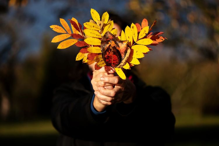 Person Holding Autumn Leaves While Standing On Field