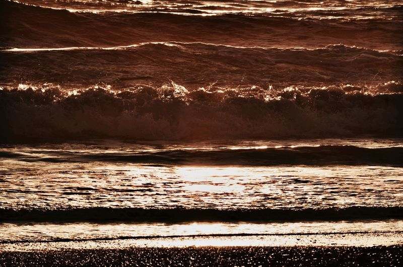 Bronze Water Ocean Beauty In Nature EyeEm Gallery Tranquility No People EyeEm Best Shots Sea California EyeEm Nature Lover Sunset Outdoors Nature California Coast Beach Waves Pebble EyeEm Majestic Sunlight Travel Destinations Eye4photography  Check This Out Nature Photography Nature_collection